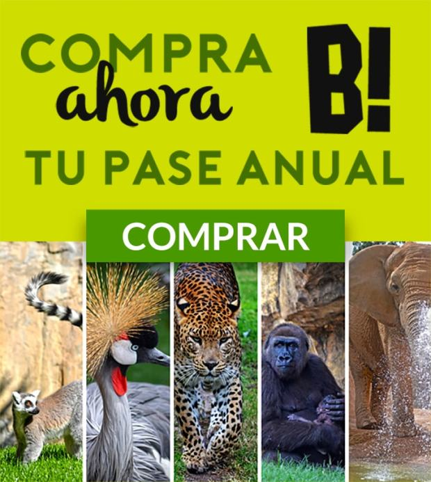 compra-pase-anual-bioparc